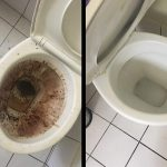 Bond Clean - Toilet